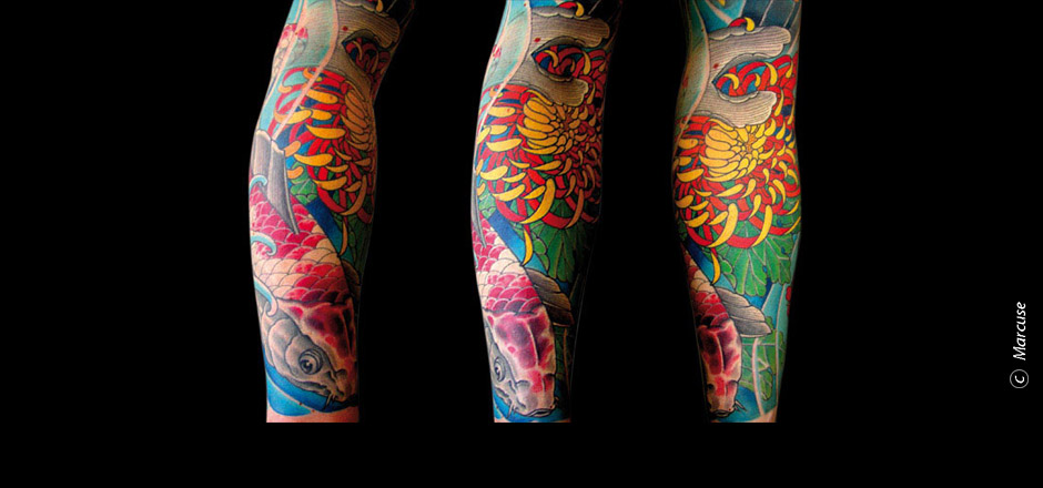 Marcuse | Smilin� Demons Tattoo Studio | tattoo gallery : Red / white Koi with colored chrysanthemum with blue background, forearm Tattoo